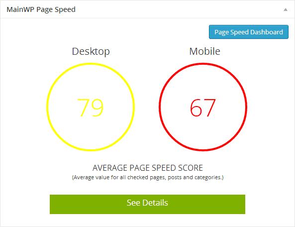 PageSpeed Widget