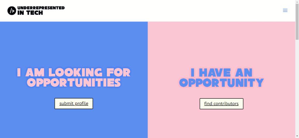 Screenshot: www.underrepresentedintech.com