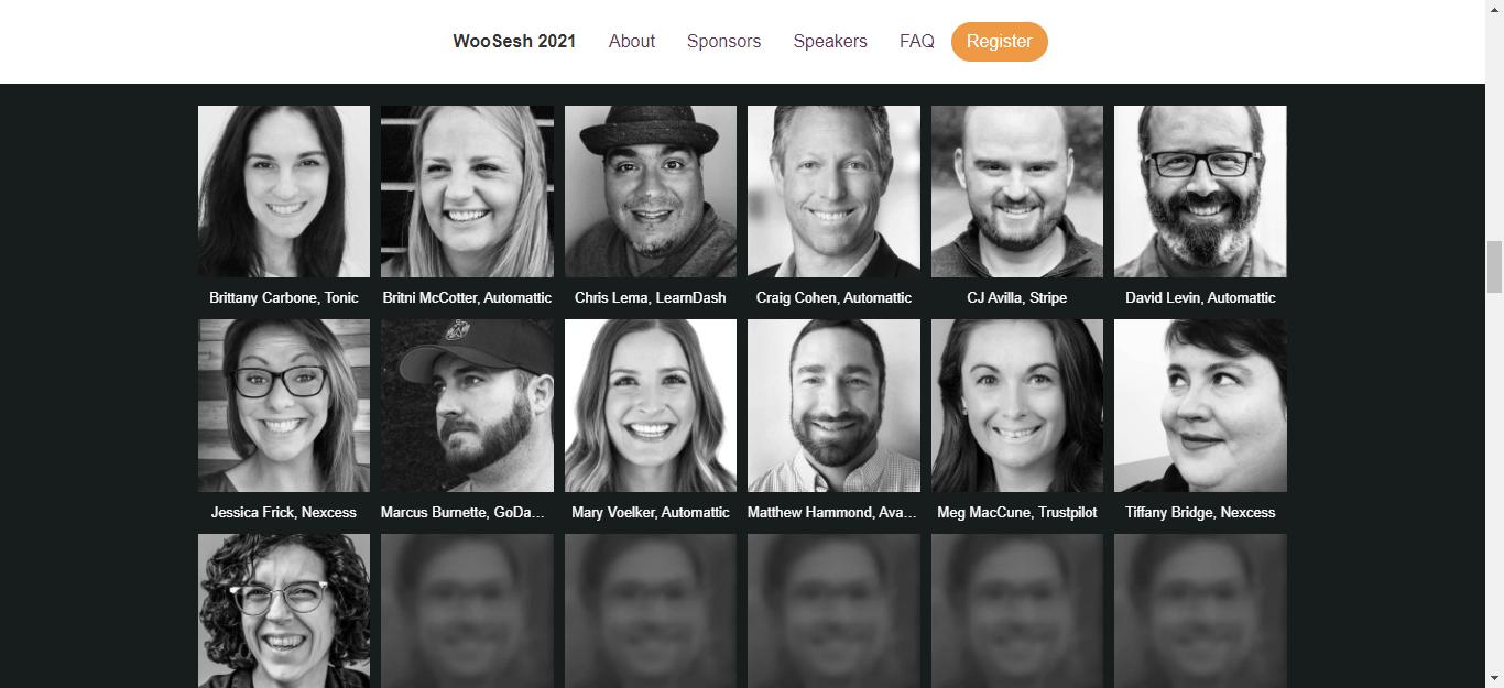 WooSesh Speakers, Screesnhot: woosesh.com